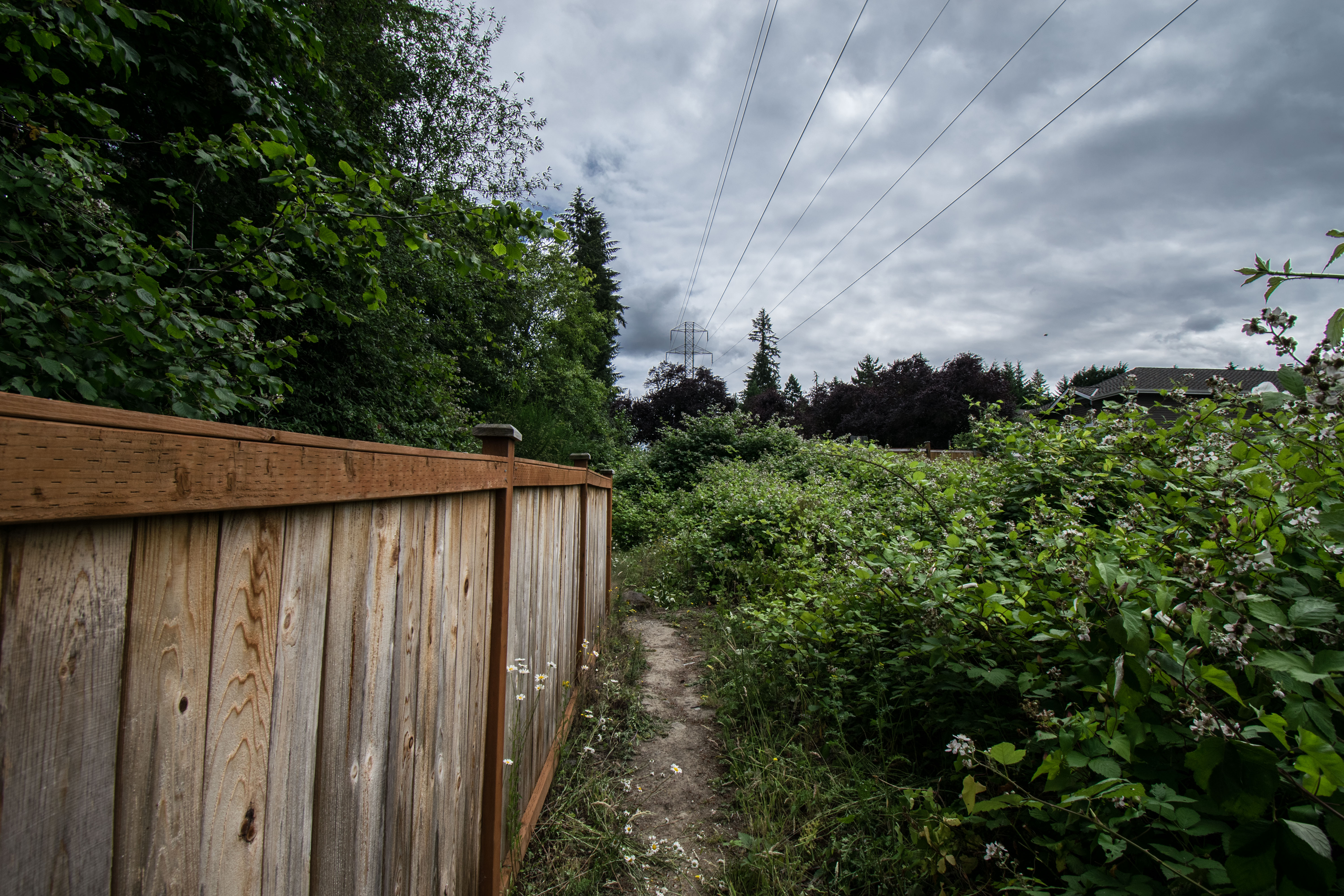 ../images/trails/horse//06 Trail nearing SE 80th Way in Olympus.jpg