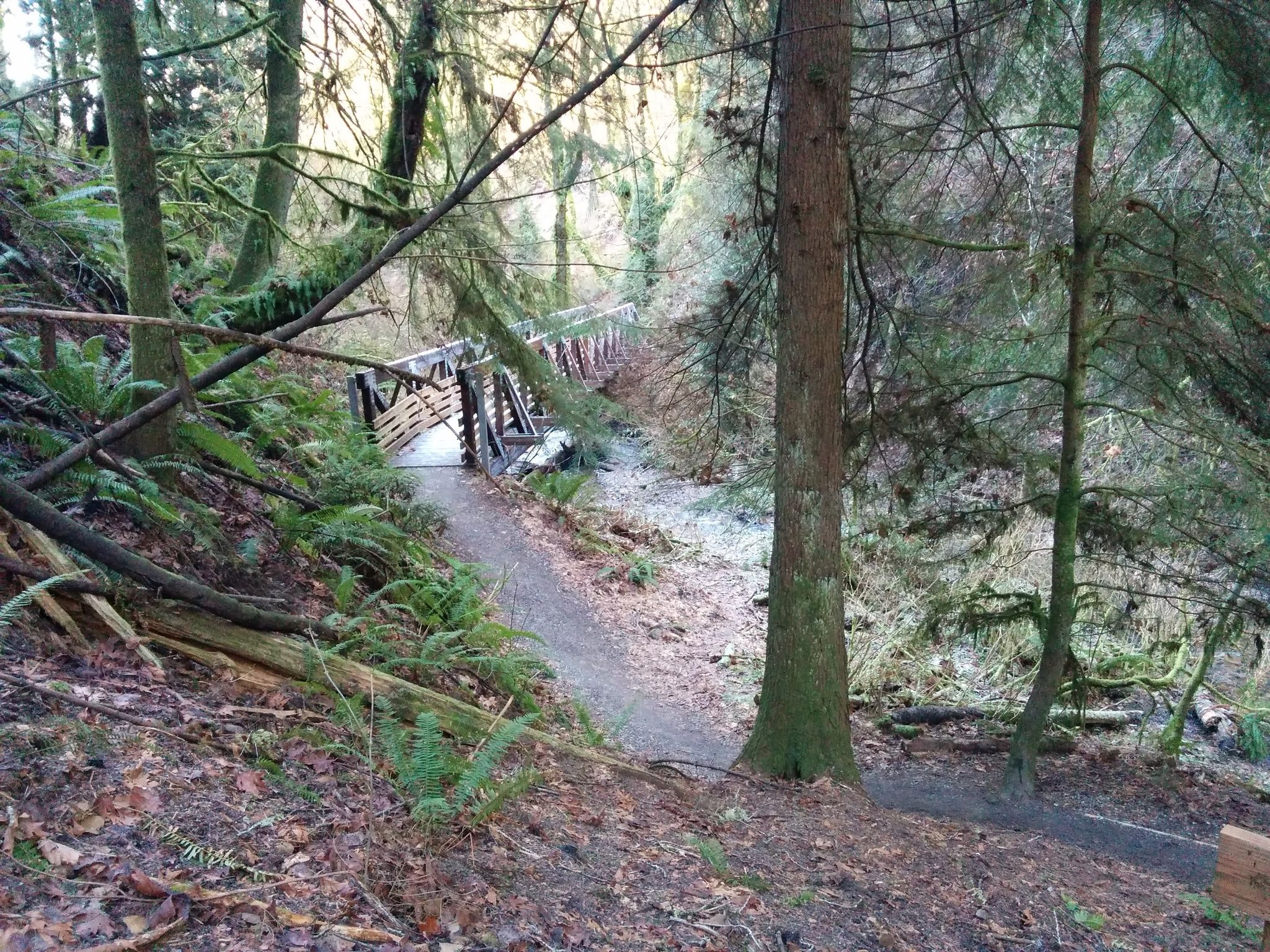 ../images/trails/primrose_loop//00 Bridge across Coal Creek.jpg
