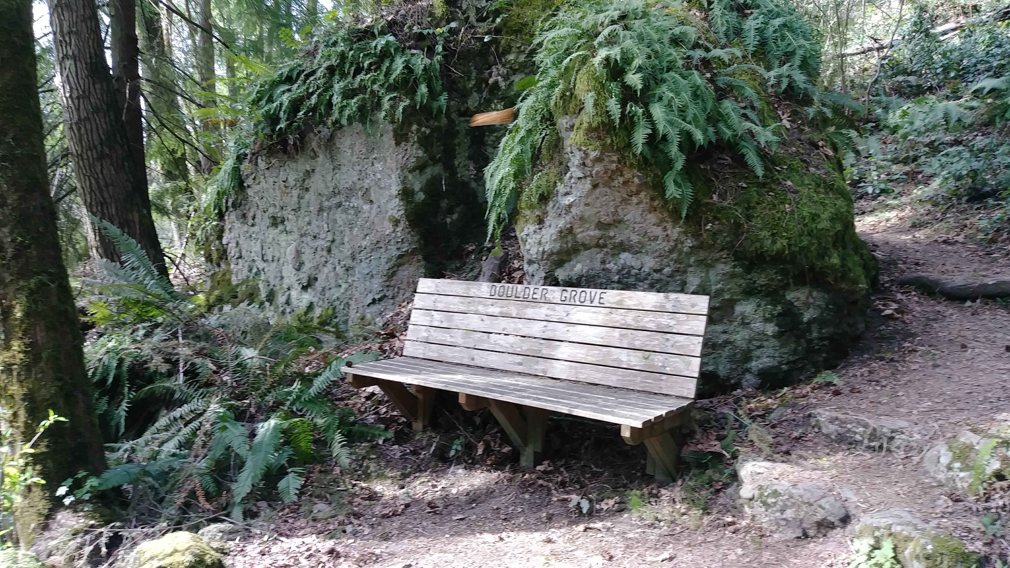 ../images/trails/terrace//09 Boulder Grove with Rocks from Glacier.jpg